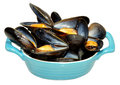 Cooked mussels fresh in a blue dish isolated on a white background Stock Photo