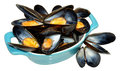 Cooked mussels fresh in a blue dish isolated on a white background Royalty Free Stock Images