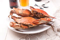 Cooked rock crabs on a plate Stock Images