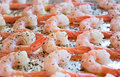 Cooked Shrimp with Herbs Royalty Free Stock Photo