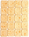 Cookie of the cracker Royalty Free Stock Photo