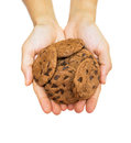 Cookie jar and cookies xi female hands offering over white background Royalty Free Stock Image