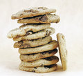 Cookie s chocolate chip in a pile soft brown background Stock Image