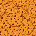 Cookie texture. Biscuit with chocolatet Drops ornamen. crackers