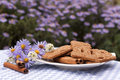 Cookies with cinnamon Stock Images