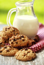 Cookies with cinnamon and milk for breakfast food Royalty Free Stock Photography