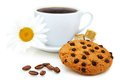 Cookies,coffee beans and cup of coffee. Stock Image