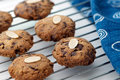Cookies on cooling rack freshly baked almond meal with chocolate chips and almond flake Stock Images