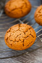 Cookies fresh from the oven for christmas Royalty Free Stock Images