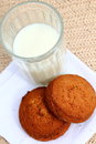 Cookies and milk oat glass of Stock Photography