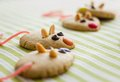 Cookies with mouse shaped and red licorice tail over green striped tablecloth Royalty Free Stock Image