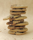 Cookies a pile of chocolate chip Royalty Free Stock Images