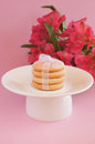 Cookies with satiny tape with alstroemeria flowers pink frosting white on white plate on pink background Stock Photography