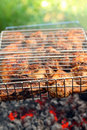 Cooking barbecue on grill close-up Stock Image