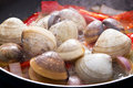 Cooking clams Stock Photos