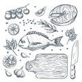 Cooking fish dorado and salmon steak, sketch illustration. Seafood restaurant menu design elements.