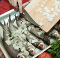 Cooking a fresh  fish Royalty Free Stock Photo