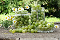 Cooking homemade gooseberry jam Stock Photography