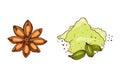 Cooking ingredients garlic paprika curry and seasoning hand drawn style vegetable ingredient vector illustration.