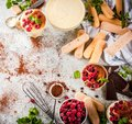 Tiramisu with mint and raspberries Royalty Free Stock Photo