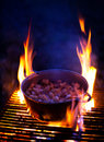 Cooking lards on grill at night traditional cuisine Royalty Free Stock Photos