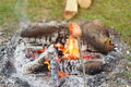 Cooking a meal over an open fire at campsite in the woods Royalty Free Stock Image