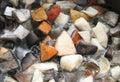 Cooking mushrooms Royalty Free Stock Photo