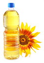 Cooking oil in a plastic bottle with sunflower. Royalty Free Stock Image