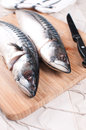 Cooking raw mackerel fish cutting board vertical Royalty Free Stock Image