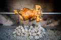 Cooking rotisserie chicken on the grill with charcoal and brique briquettes in professional steak house or barbecue restaurant Stock Photography
