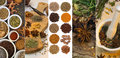 Cooking Spices - Flavoring and Seasoning Royalty Free Stock Photo
