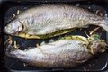 Cooking two fish, rainbow trout stuffed with green sauce Royalty Free Stock Photography