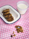 Cooky with milk and dish of cookies on check table cloth rustic home baked withcookies in an old enamel a glass a pink white Stock Photography