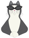 Cool cat happy black and white wearing sunglasses and looking very vector available Stock Photography