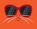 Cool Cat Sunglasses Royalty Free Stock Photo