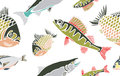 Cool Fish Seamless Pattern Stock Photos