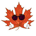Cool mapple leaf cartoon Royalty Free Stock Photo