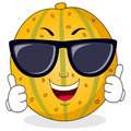 Cool Melon Character with Sunglasses