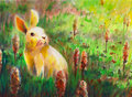 Cool rabbit traditional watercolor painting on paper Royalty Free Stock Images