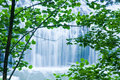 Cool Waterfall Viewed through Trees Royalty Free Stock Photography
