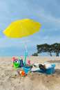 Cooling down for dog at the beach funny is having a with water and parasol in summer Royalty Free Stock Photo