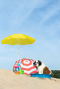 Cooling down for dog at the beach Royalty Free Stock Photo