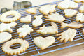 Cooling freshly baked cookies Stock Images
