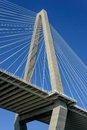 Cooper river bridge charleston south carolina new Royalty Free Stock Photos