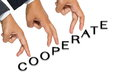 Cooperate Stock Image