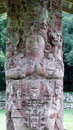 Copan honduras mayan stela in Stock Photography