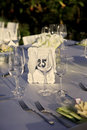 Copo de água imagens do estilo do vintage Foto de Stock