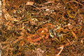 Copper shavings Stock Image