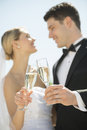 Coppie che tostano champagne flutes against sky Immagine Stock Libera da Diritti