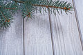 Copyspace image branch of pinetree on old white painted wooden b Royalty Free Stock Photo